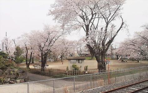 小木津駅近くの公園