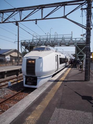 JR東日本 651系 快速「足利大藤まつり号」