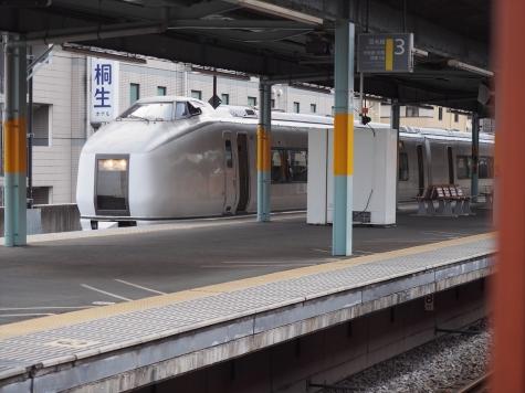 JR東日本 651系 快速 足利大藤まつり号
