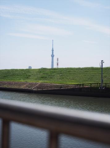 東京スカイツリー【綾瀬川】