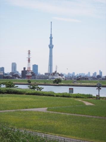 東京スカイツリー【荒川左岸】