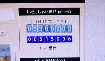P1170767 - コピー