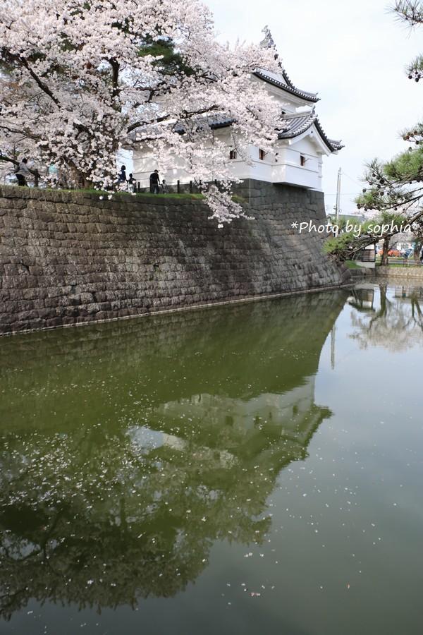 櫓と桜のある風景Ⅱ