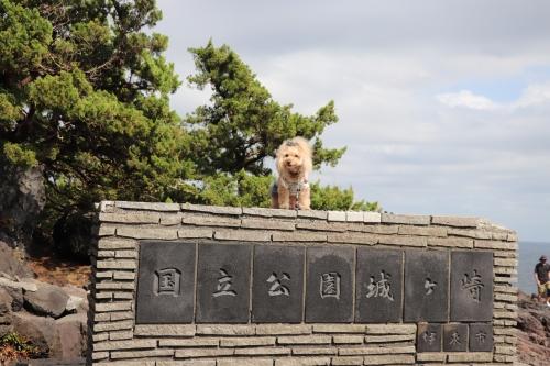 城ケ崎公園