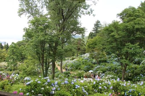 舞鶴自然文化園