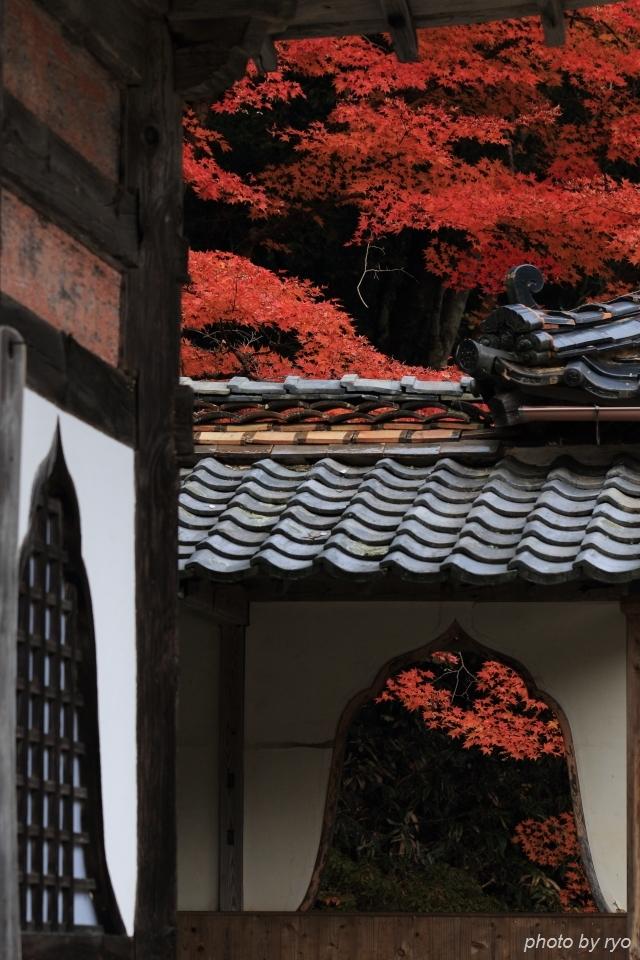 大慈寺の紅葉