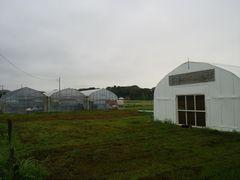【写真】曇り空の受付ハウスとベアハウス