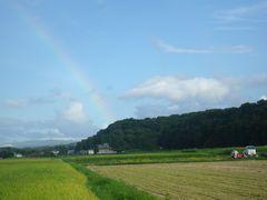 【写真】農園東側の空にかかる虹
