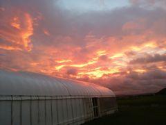 【写真】受付ハウスの上に広がる真っ赤な朝焼けの空