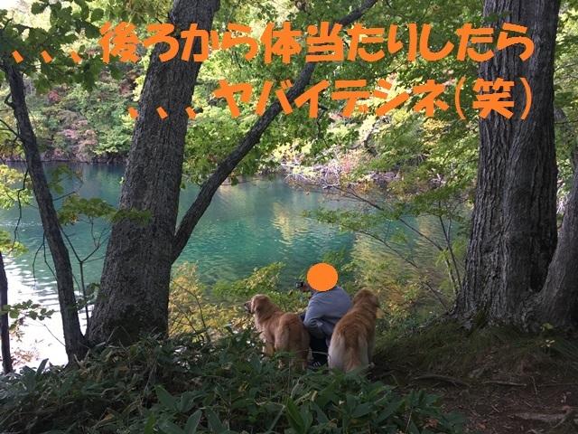 IMG_4221_PP.jpg