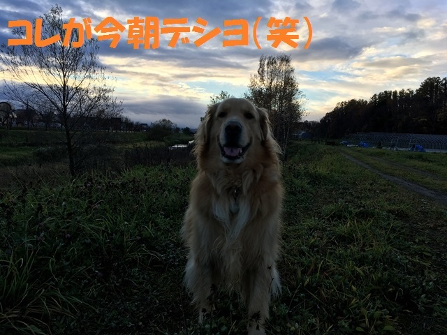 IMG_4480_PP.jpg