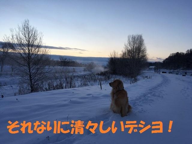 IMG_5104_PP.jpg