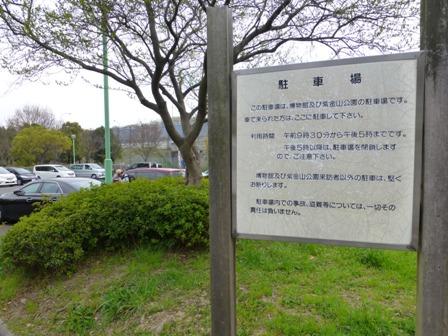 紫金山公園1