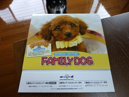 2016狂犬病18