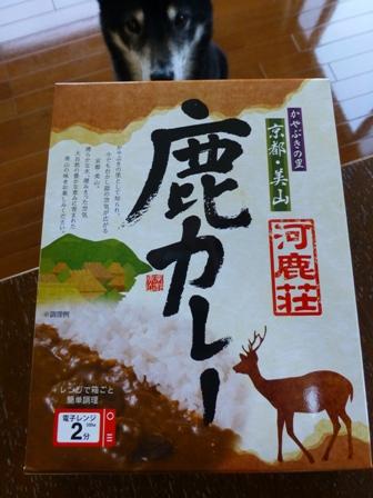 京都美山鹿カレー1