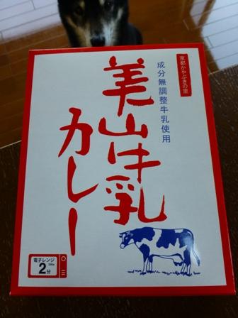 美山牛乳カレー1