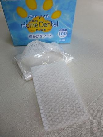 歯磨きグッズ22
