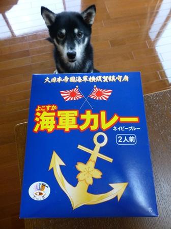 よこすか海軍カレー2
