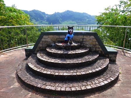 登力展望公園9