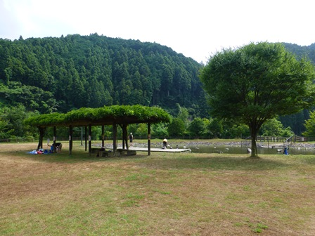 下流親水公園7