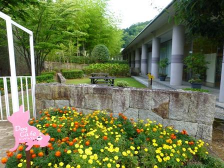 青山ガーデンリゾート19