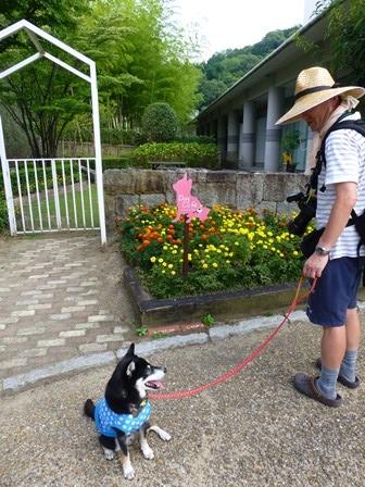 青山ガーデンリゾート20