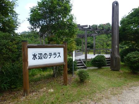 三重県上野森林公園4