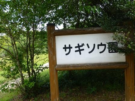 三重県上野森林公園7