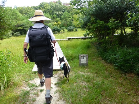 三重県上野森林公園8
