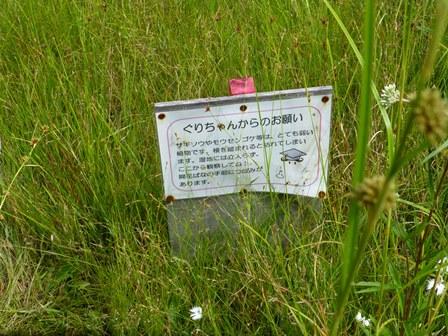 三重県上野森林公園10