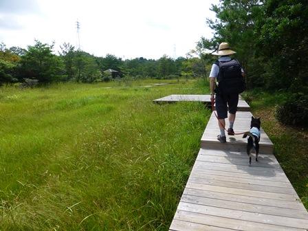 三重県上野森林公園11