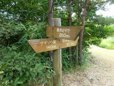 三重県上野森林公園21