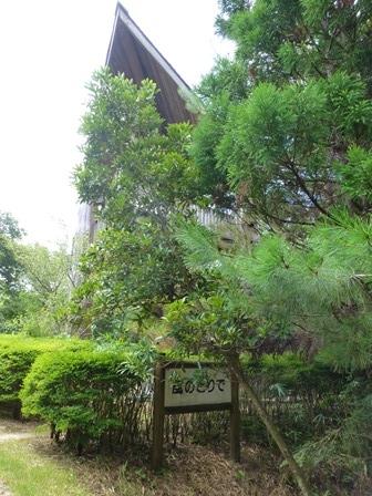 三重県上野森林公園24