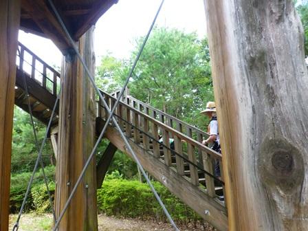三重県上野森林公園26