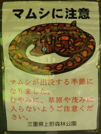三重県上野森林公園33