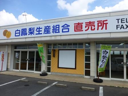 白鳳梨生産組合直売所1