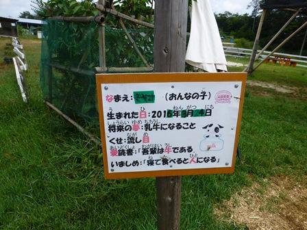 山田牧場16