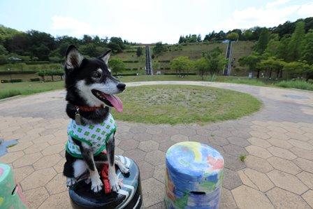 滋賀県立陶芸の森19