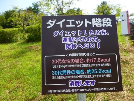 滋賀県立陶芸の森26