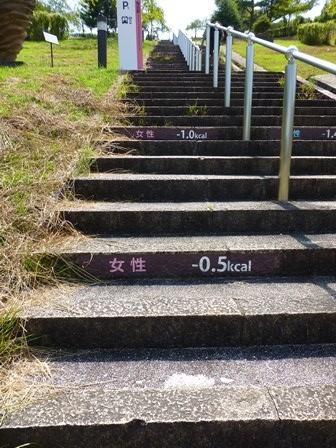 滋賀県立陶芸の森27