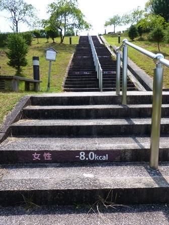 滋賀県立陶芸の森30