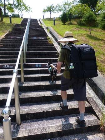 滋賀県立陶芸の森32