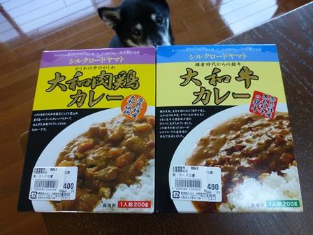 シルクロードヤマト大和肉鶏カレー1