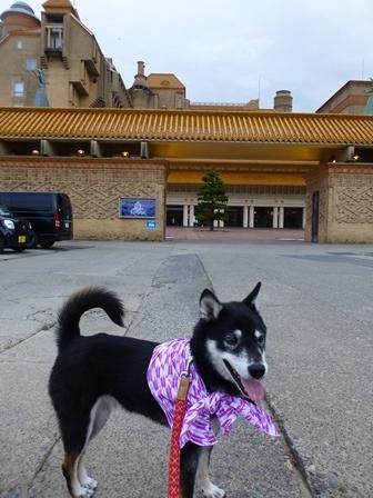 ホテル川久お散歩4