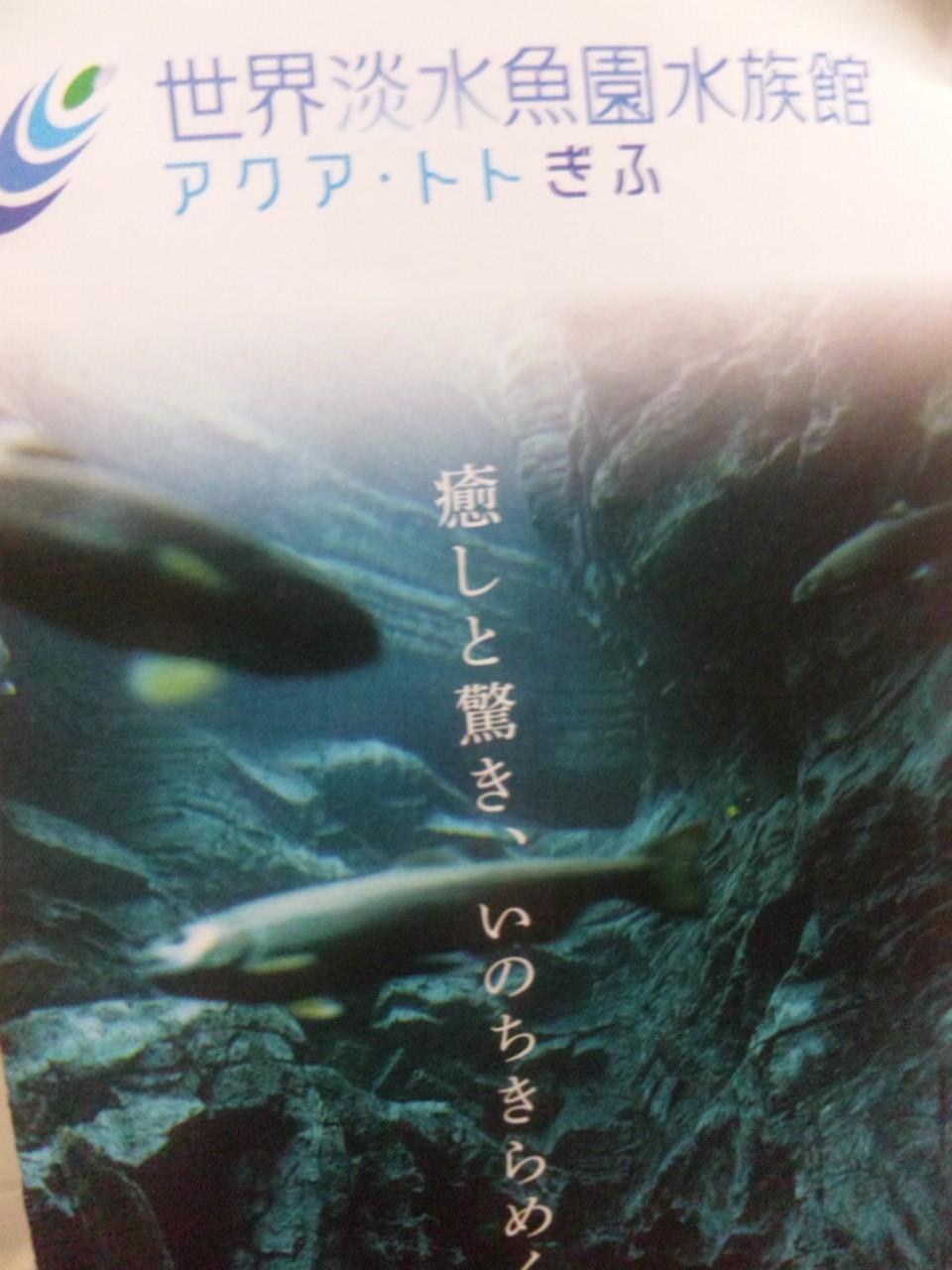 SH3J0663.jpg