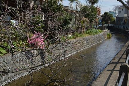2016-03-26_55.jpg