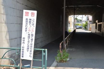 2016-05-21_25.jpg