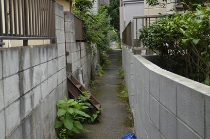 2016-08-11_7.jpg