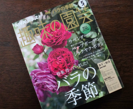 s811-1趣味の園芸