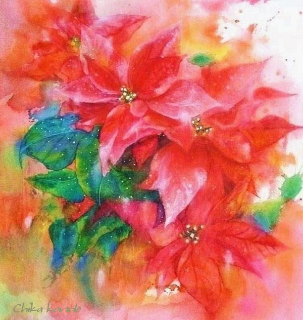 FB Poinsettia